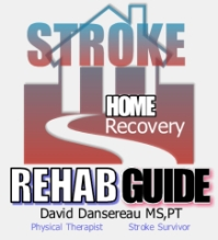 Stroke Recovery Guide