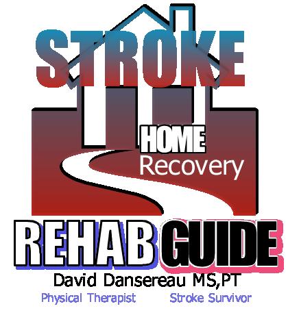 David Dansereau's Home Stroke Recovery Guide